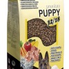 Maximo Puppy